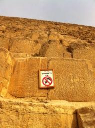 Egypt snips &clips